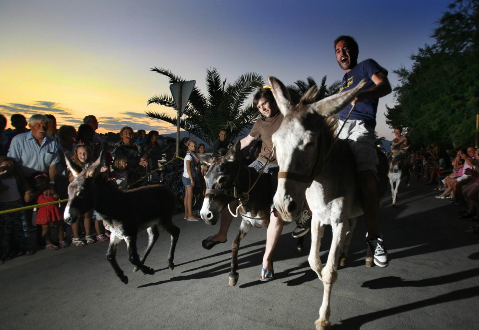 Things to do on Korcula this year - Watch the donkey racing